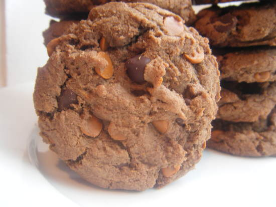 Double Chocolate Fudge Cinnamon Cookies Recipe | SnappyGourmet.com