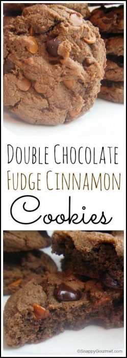 Double Chocolate Fudge Cinnamon Cookies recipe - easy cookie recipe with lots of chocolate and cinnamon! SnappyGourmet.com
