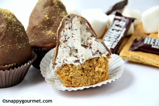 Chunky S'mores Dipped Cupcakes | snappygourmet.com