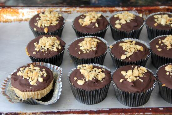 Mini Buckeye Cheesecakes Recipe - an easy chocolate peanut butter cheesecake | snappygourmet.com