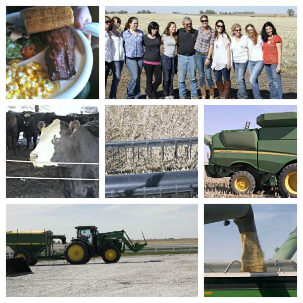 Cornquest - trip to Iowa | SnappyGourmet.com